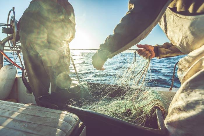 Fishermen pulling up net