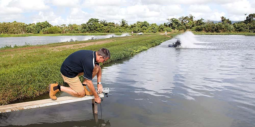 Testing fish pond