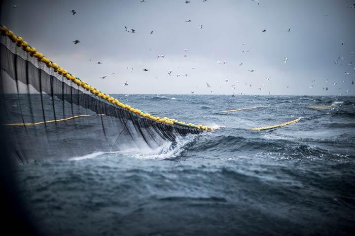 Trawling fishing net